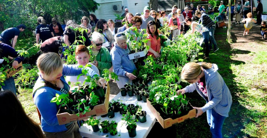 5/20/17: 5th Annual Heirloom Plant Sale